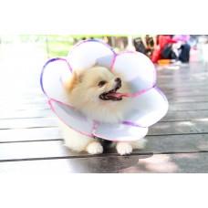 花朵防舔咬頭套【醫療板】(尺碼M)  **台灣新型專利設計**